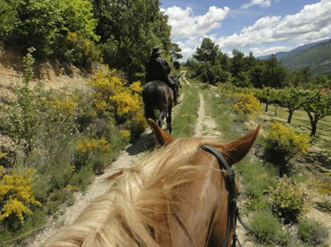 Equestrian hiking